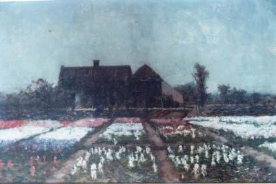 Bloembollenvelden met boerderij en boer